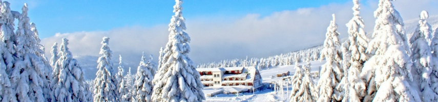 Wintersport hotels