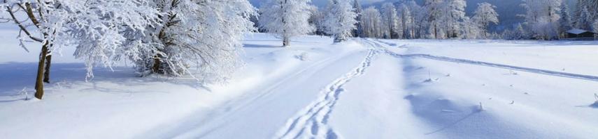 Wintersport accommodatie Tsjechië