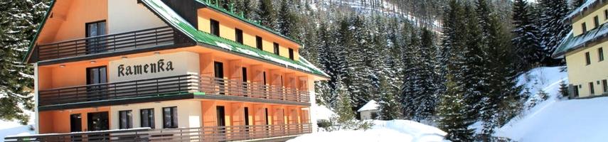 Vakantiehuis Tsjechië wintersport