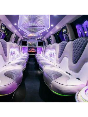 Cadillac limousine Praag - max. 18 personen